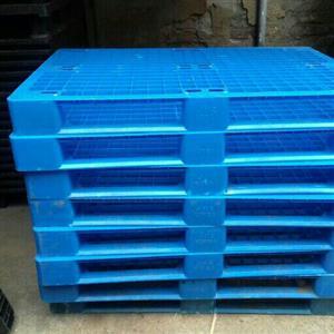 Plastic pallets for sale size 1.2x800m