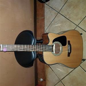 Takamine 12 STRING Guitar  GD 30CE - 12