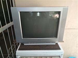 HISENSE 54CM KLEUR TV