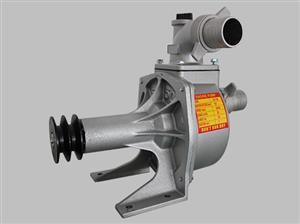 SU 80 Pedestal water pump