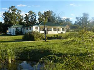 Immaculate house and cottage on a smallholding affording great country living - Mpumalanga