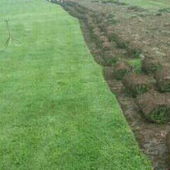 Instant Lawn And Landscaping Services