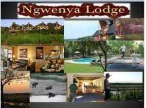 Ngwenya Lodge Available 2 to 6 December 2019