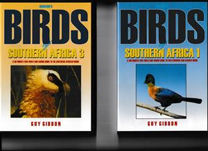 Birds of Southern Africa - triple DVD set by Guy Gibson