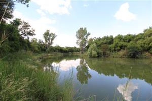 90 Ha Farm with Water Rights next to the Renoster River, Viljoenskroon, Free State