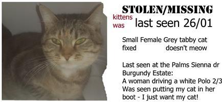 Cat stolen/missing since last Saturday!