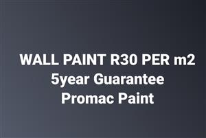 WALL PAINTING R30 per m2
