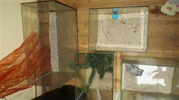 Tanks with accessories for sale