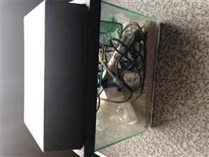 Fish tank, heat & air pump and filter for sale