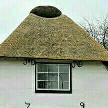 thatch roof lapa brushing extension leakage and storm damage repairs