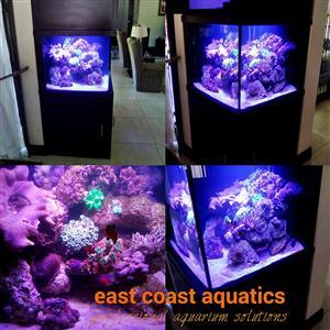 eca - custom built marine & tropical aquariums