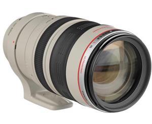 Canon EF 100-400 mm f/4.5-5.6L IS USM lens