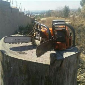 Instant Lawn Installers and Tree Felling Services
