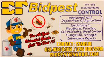 Cheap Pest Controll
