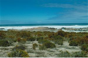 JUST RELEASED: Rare Beach Front Plot in Private Game Reserve