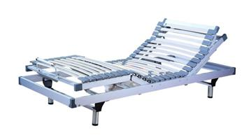 Electric bed with rise and recline features