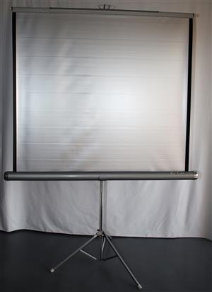 "Portable Projector Screen 50"" x 50"""