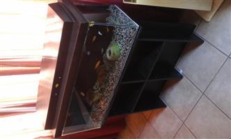 Complete fish tank Setup