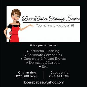 BoereBabes Cleaning Service