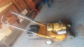 I have a lawnmower of sale. Robbin prof c10. Good working condition