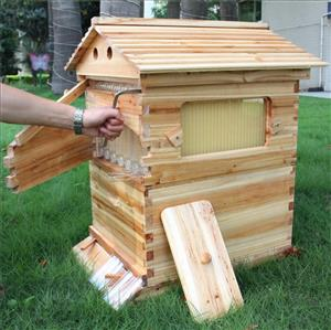 Beehives – harvest your own honey