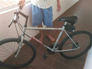 """Reiley 26"""" bicycle"""