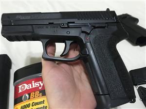 Sig Sauer gun for sale