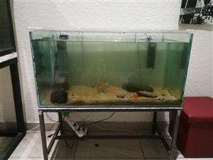 250l fish tank