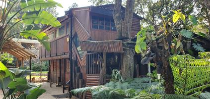Forest Walk Self-catering Guesthouse for Sale