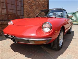 1981 Alfa Romeo Spider 2000L Series II LHD