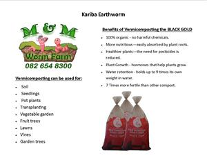 Vermicompost / Worm Castings