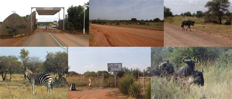 MAGNIFICENT 21,4H PLOT IN DINOKENG GAME RESERVE ON AUCTION!
