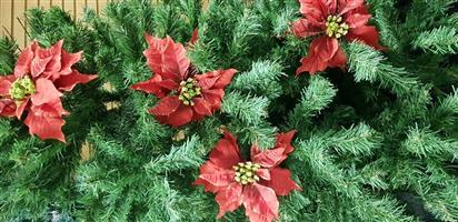 Christmas Home Decor Red Poinsettias