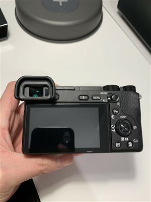 Sony a6500 with Sony Vario Tessar T E 16-70mm f4 ZA OSS Lens