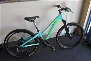 "24""D Titan Calypso Bicycle"