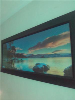 Large framed art
