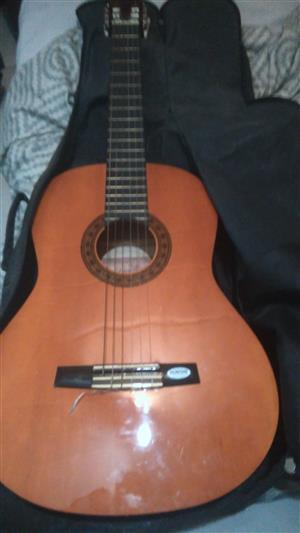 Valentia CG160 Guitar and gig bag