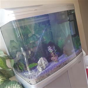 Sun Sun 260 liter Aquarium Fish tank