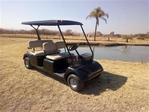 4x Seater Golf Cart Petrol