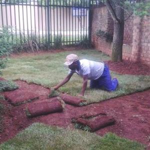 Farm fresh best quality instant lawns. Compost, Topsoil, Lawn dressing.