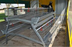 Quality chicken layer cages for sale