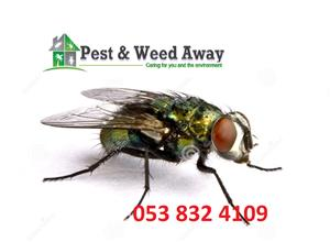 Pest and Weed Away - All Pest and Weed Control