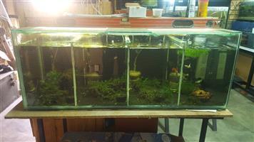 Fish Tanks and Aquariums in Johannesburg | Junk Mail