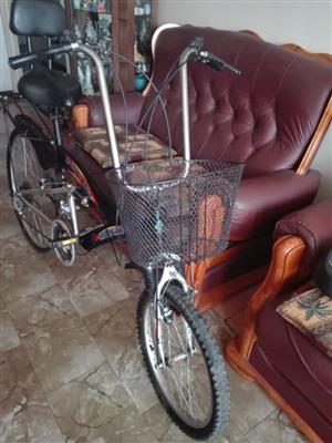 Leisure bicycle