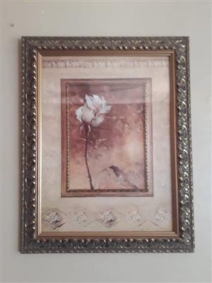 Wit roos geraamde portret te koop