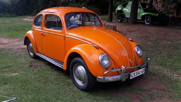 BEETLE 1962 THICK POST ACCIDENT AND RUST-FREE COLLECTORS CAR