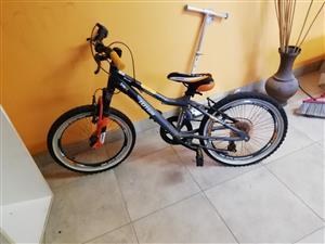 Totem Pro 20 bicycle