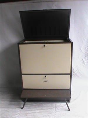 Steel cabinet vertical 2 tone