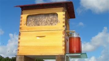 New cedarwood beehive with flow frames (honey on tap)