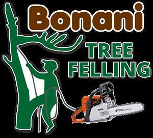 BONANI TREE FELLING 071 563 0877